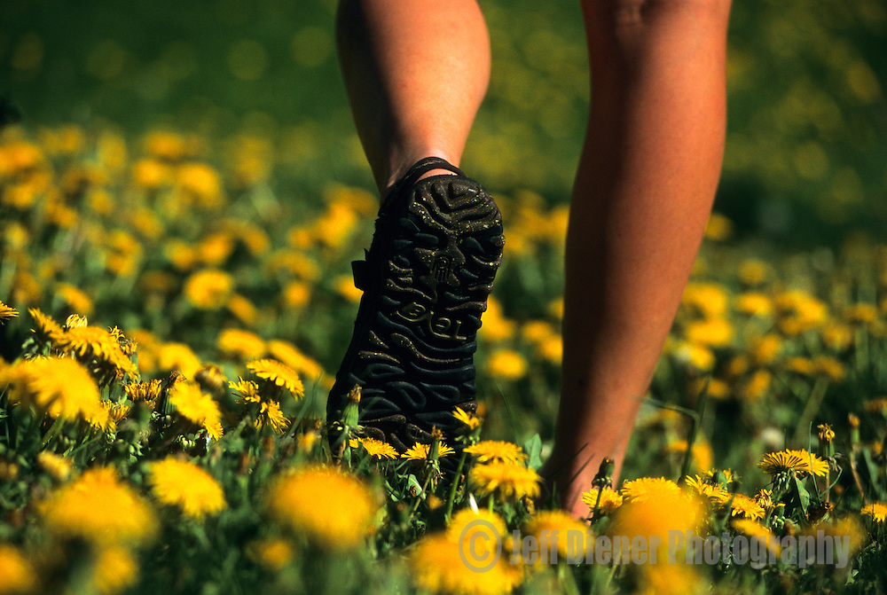 A young woman walks through flowers in Jackson Hole, Wyoming (Selective Focus).