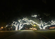 Jekyll Island Historic District, Main Street, giant oaks decorated with Christmas lights.