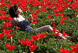 © Licensed to London News Pictures. 28/03/2012, Stratford upon Avon, Warwickshire, UK. Pictured is Charlotte Bentham soaks up the sun in the centre of her home town, Stratford upon Avon. Photo credit : Dave Warren/LNP