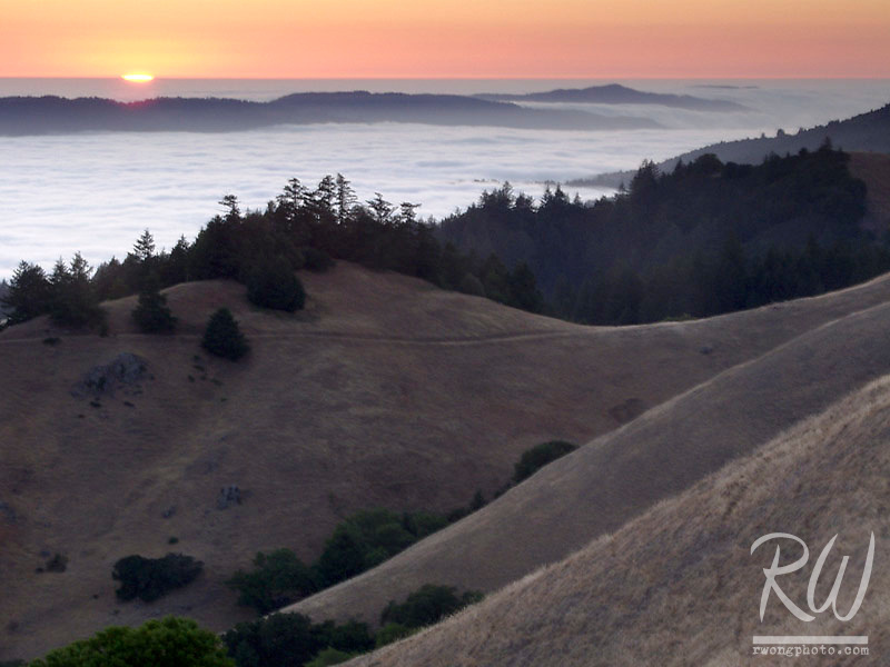 Bolinas Ridge at Sunset with Fog over the Pacific Ocean, Mount Tamalpais State Park, California