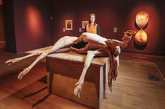 New York - Flesh Exhibition At York Art Gallery - 22 Sep 2016