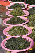 Jagalchi Fish Market. Sea weed.