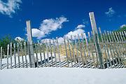 USA Newport, RI - Dune fences along Gooseberry beach.