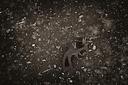 A broken toy gun on a street in Laredo, Texas.