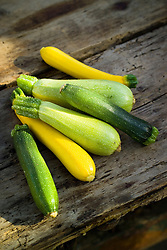 Freshly harvested courgettes on a wooden table. Courgette 'Taxi', 'Defender' and 'White Defender'. Cucurbita pepo