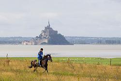 Rouslan Gekiev, (RUS), Braslet<br /> Alltech FEI World Equestrian Games™ 2014 - Normandy, France.<br /> © Hippo Foto Team - Leanjo de Koster<br /> 25/06/14