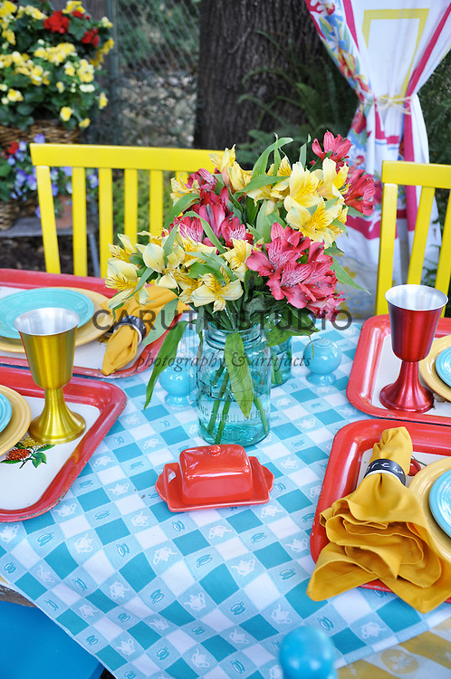 Retro outdoor party, tabletop detail