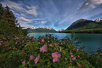 Cooper Landing Alaska in the Summer