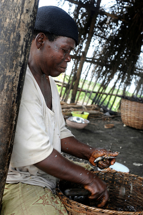 (Benin March 1, 2008  Beninese woman selling in informal fish market in harbor
