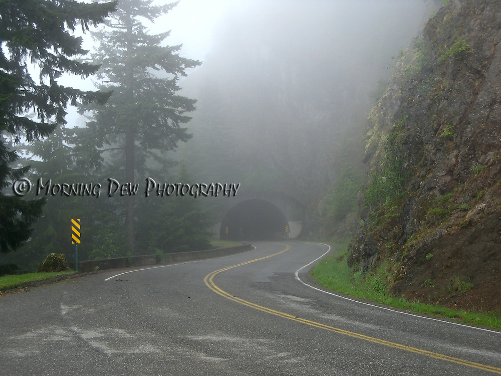 Fog obscures the approach to a tunnel on Hurricane Ridge Road, Olympic National Park.