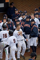 The Virginia Cavaliers Baseball Team celebrates after scoring a run against GWU.  The Virginia Cavaliers Baseball Team defeated the George Washington University Colonials 11-0 in the first of a three game series on February 17, 2007 at Davenport Field, Charlottesville, VA.