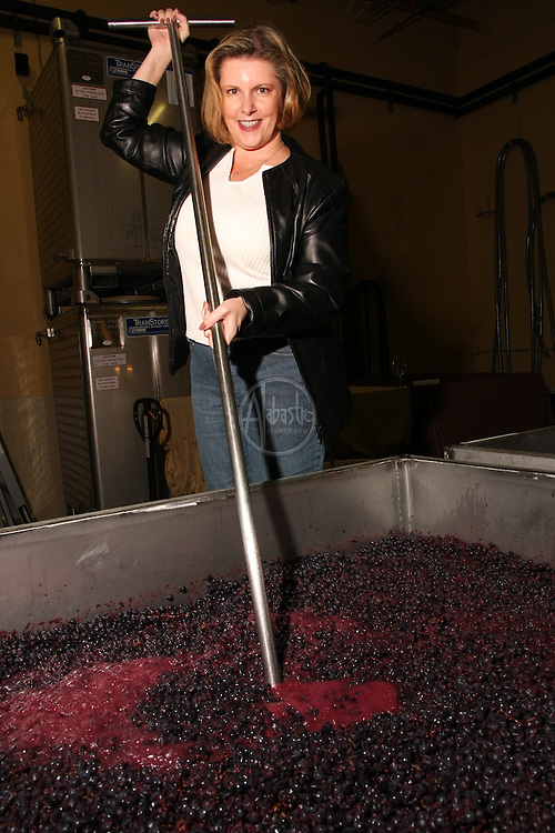 Cabernet punch down at William Church Winery, Woodinville, WA.