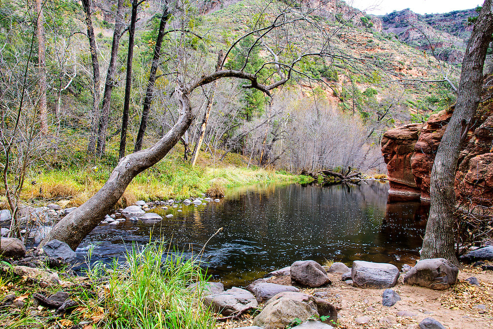 This beautiful creek  runs between the cities of Flagstaff and Sedona, in Arizona.