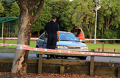 Auckland-Man stabbed in Warren Freer Park, Sandringham