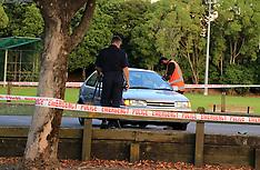Auckland-Man stabbed in Warren Freer Park, Sandringham
