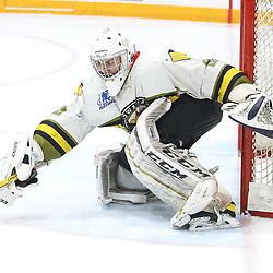 "TRENTON, ON  - MAY 3,  2017: Canadian Junior Hockey League, Central Canadian Jr. ""A"" Championship. The Dudley Hewitt Cup Game 3 between Dryden GM Icedogs and Powassan Voodoos.  Nate McDonald #33 of the Powassan Voodoos goes for the poke check during the third period<br /> (Photo by Alex D'Addese / OJHL Images)"