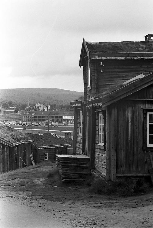 Rörås i Norge.