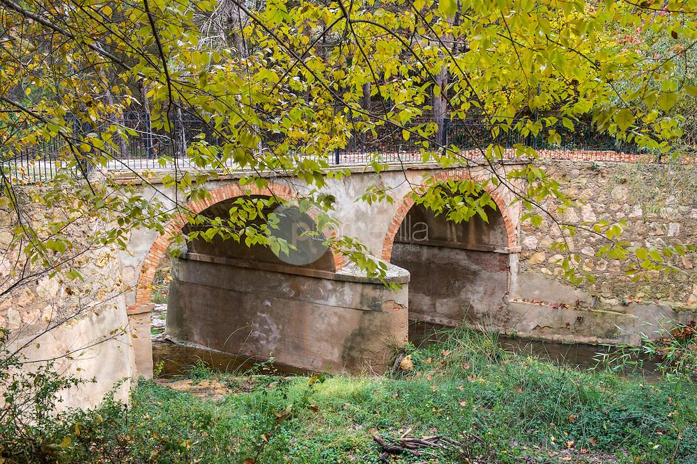 Otoño en la Rambla de los Molinos. Almansa. Albacete ©Antonio Real Hurtado / PILAR REVILLA