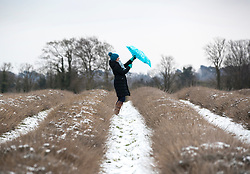 © Licensed to London News Pictures. 18/03/2018. Banstead, UK. A visitor to Mayfield Lavender farm shelters struggles with her umbrella as light flurries of snow and freezing temperatures continue. Amber weather warnings remain in place for parts of the UK for a second day. Photo credit: Peter Macdiarmid/LNP