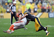 Cincinnati Bengals tight end C.J. Uzomah (87) gets tackled by Pittsburgh Steelers cornerback Ross Cockrell (31) as he catches a fourth quarter pass good for a first down during the 2016 NFL week 2 regular season football game against the Pittsburgh Steelers on Sunday, Sept. 18, 2016 in Pittsburgh. The Steelers won the game 24-16. (©Paul Anthony Spinelli)