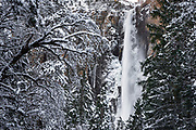 Bridalveil Fall in winter, Yosemite Valley, Yosemite National Park, California USA