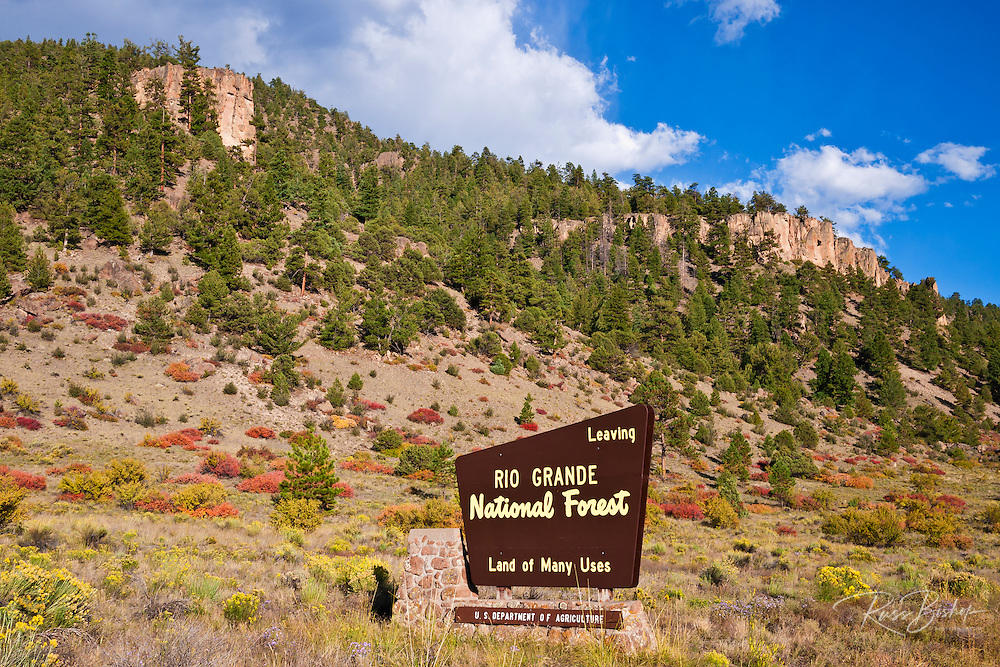 National Forest sign under the Rio Grande Palisades (Highway 149), Rio Grande National Forest, Colorado