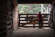 EZ Rocking Ranch | Recluse, WY