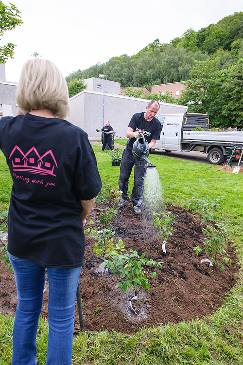 Waverley Housing Association community day, held at Langlee, near Galashiels. Staff cleared garden areas and worked with local partners to hold an open day for health and wellbeing. In the evening the Langlee Residents Association held the quaterly meeting.