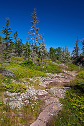 Rocky section of the Stoll Memorial Trail, Isle Royale National Park, Michigan, United States of America