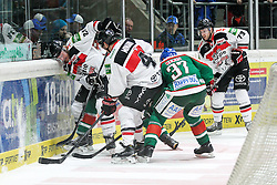 12.12.2014, Curt Fenzel Stadion, Augsburg, GER, DEL, Augsburger Panther vs Koelner Haie, 26. Runde, im Bild l-r: im Zweikampf, Aktion, mit Torsten Ankert #81 (Koelner Haie), Chris Minard #41 (Koelner Haie), Arvids Rekis #37 (Augsburger Panther), Mike Iggulden #73 (Koelner Haie) // during Germans DEL Icehockey League 26th round match between Augsburger Panther vs Koelner Haie at the Curt Fenzel Stadion in Augsburg, Germany on 2014/12/12. EXPA Pictures © 2014, PhotoCredit: EXPA/ Eibner-Pressefoto/ Kolbert<br /> <br /> *****ATTENTION - OUT of GER*****