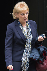 Downing Street, London, October 20th 2015.  Minister for Small Business, Industry and Enterprise Anna Soubry leaves 10 Downing Street after attending the weekly cabinet meeting.