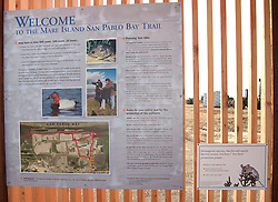 The Mare Island San Pablo Bay Trail is scheduled to be opened to the public in November 2010.  The 4-mile loop offers visitors stunning views of the marsh, its range of topography,golden grasses and reeds, colorful pickleweed and an exciting array of birds, including mourning doves, kestrels, killdeers, kites, harriers, stilts and mallard ducks.