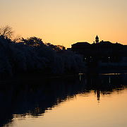 Before sunrise silhouette of the waterfront of the Tidal Basin in Washington DC, during the bloom of the famous cherry blossoms.