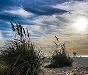 Sand Dunes At Coronado Beach In San Diego