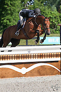 1408 - Angelstone - The Headwaters Cup & Hunter Spectacular CSI** - July 9th-13th