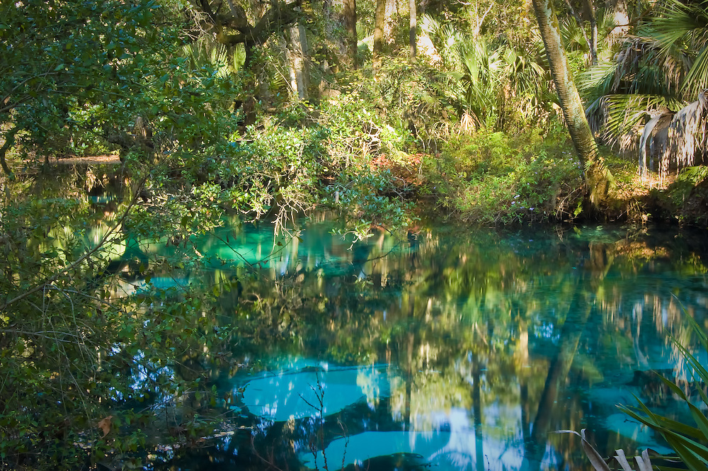 Crystal blue water bubbling to the surface at Juniper Springs, Ocala National Forest, Marion County, Fl.