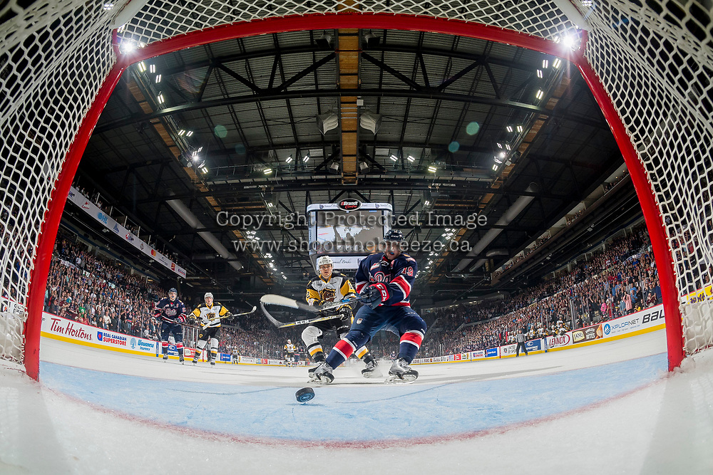 REGINA, SK - MAY 25: Jake Leschyshyn #19 of Regina Pats scores an empty net goal in the third period against the Hamilton Bulldogs at the Brandt Centre on May 25, 2018 in Regina, Canada. (Photo by Marissa Baecker/CHL Images)