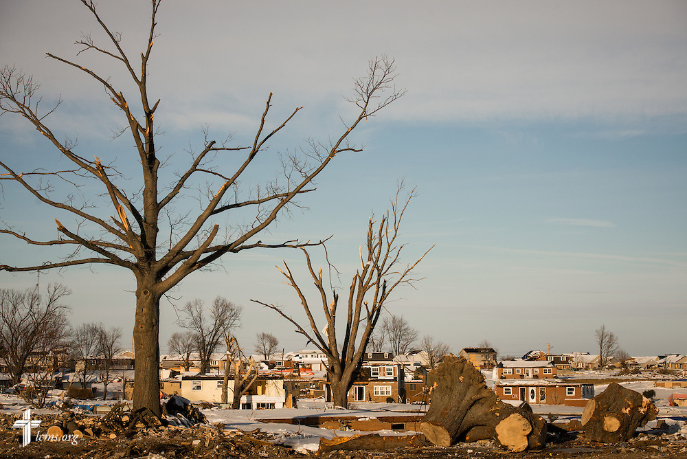 Mangled trees rise from damaged neighborhoods in Washington, Ill., on Wednesday, Dec. 18, 2013. Nearly two dozen tornadoes plowed through Illinois in November, killing a total of seven. LCMS Communications/Erik M. Lunsford