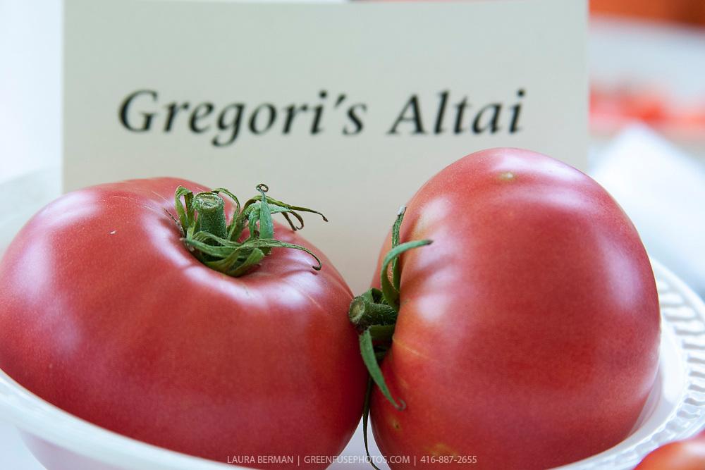Gregori's Altai Heirloom Tomato