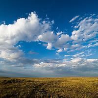 montana prairie blue sky clouds