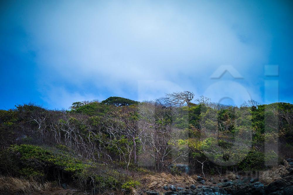 Deserted hillside by Dam Tre bay, Con Dao, Ba Ria - Vung Tau Province, Vietnam, Southeast Asia