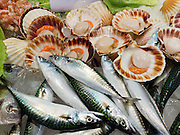 """Fresh scallops and fish are sold at the Rialto Pescheria, fish market. Venice (Venezia) is the capital of Italy's Veneto region, named for the ancient Veneti people from the 10th century BC. The romantic """"City of Canals"""" stretches across 117 small islands in the marshy Venetian Lagoon along the Adriatic Sea in northeast Italy, Europe. The Republic of Venice wielded major sea power during the Middle Ages, Crusades, and Renaissance. Venice and the Venetian Lagoon are honored on UNESCO's World Heritage List."""