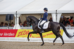 Van Der Putten Marieke, (NED), El Capone 5<br /> Small Final 6 years old horses<br /> World Championship Young Dressage Horses - Verden 2015<br /> © Hippo Foto - Dirk Caremans<br /> 08/08/15