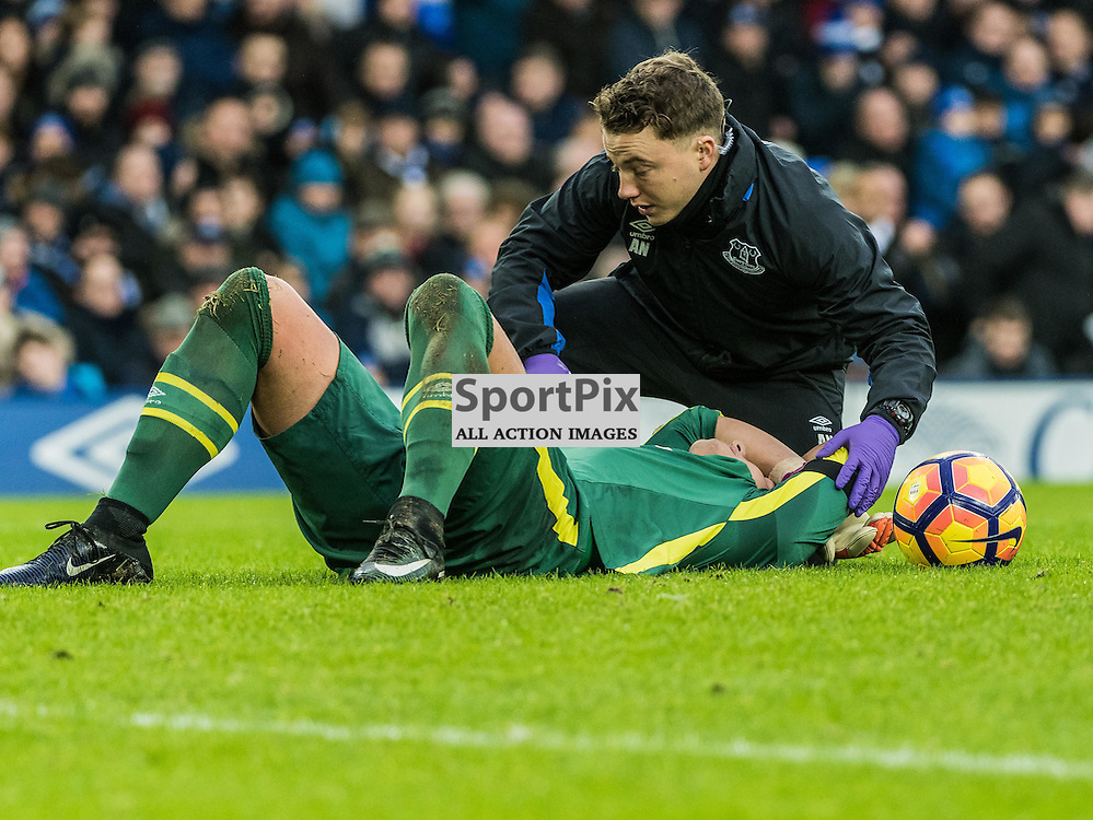 Everton goalkeeper Joel Robles (1) receives treatment in the Premier League match between Everton and Manchester City<br /> <br /> (c) John Baguley | SportPix.org.uk