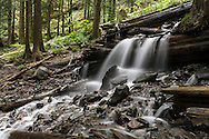 Small waterfall on Bridal Creek in Bridal Veil Falls Provincial Park, Chilliwack, BC.