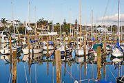 A sea of masts reflecting in the water ripples of this marina at milford, auckland, new zealand