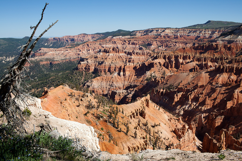 Cedar Breaks National Monument, Utah.