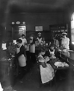 Children in an American school. The girls are learning to sew whil the boys are being taught woodwork.  Photograph c1900.