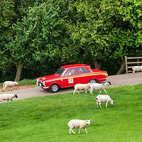 Car 28 Robert Allan / Edward Hunter