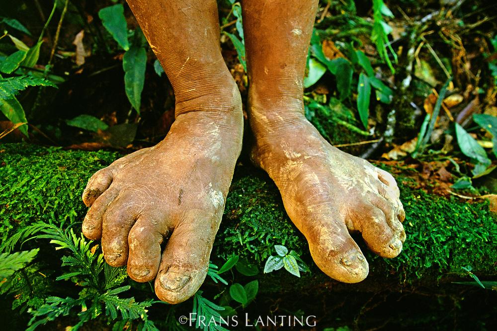 Ashaninka Indian feet, Vilcabamba, Peru
